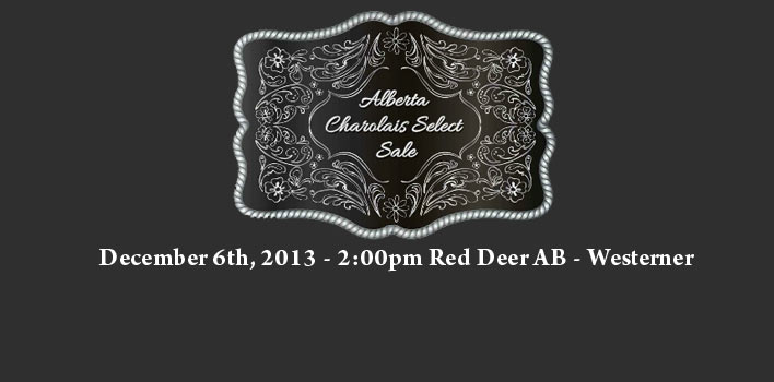 Alberta Charolais Select Sale